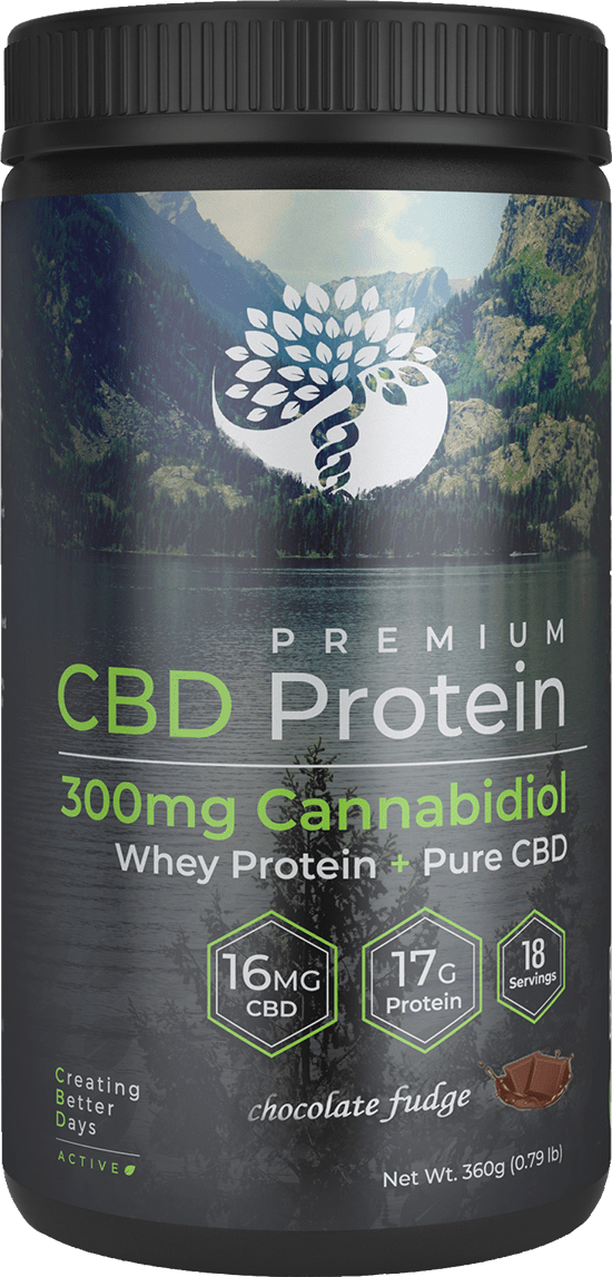 Creating Better Days Chocolate CBD Whey Protein 300mg